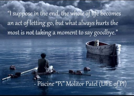 17 Best Life Of Pi Quotes On Pinterest