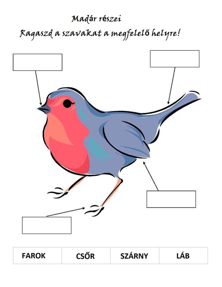 Венгерский язык для лентяев