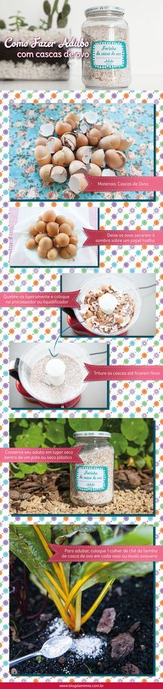 Como fazer adubo com casca de ovo - Blog da Mimis - Esse adubo é uma forma barata e orgânica de adicionar cálcio, magnésio e potássio nas plantas.