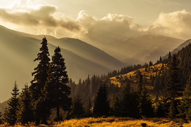 morning in the Godeanu mountains, Romania