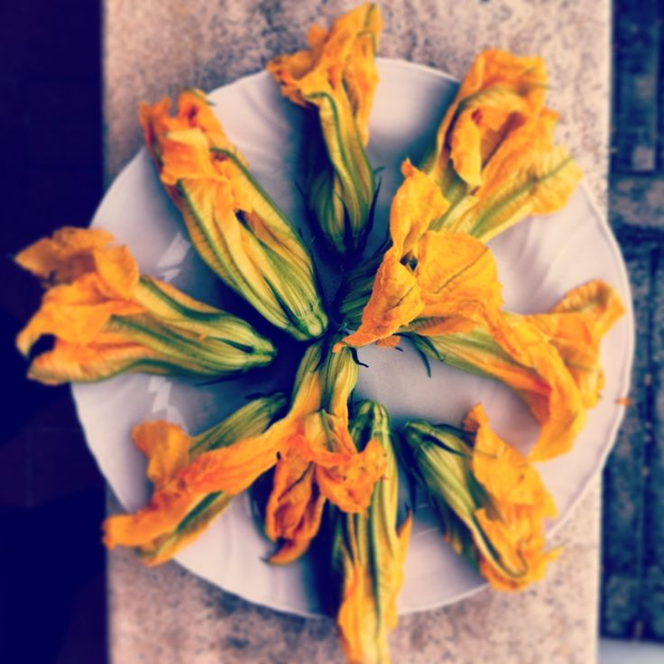 Freshly picked courgette flowers from my garden in Tuscany. http://mozzarelladiaries.blogspot.it/