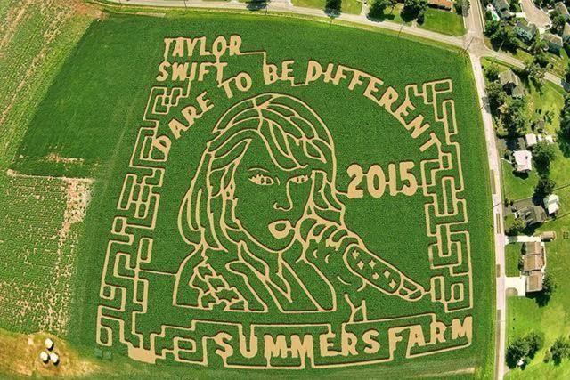 Celebrate Fall at Summer Farm Festival: Corn Maze 2015 - Summers Farm