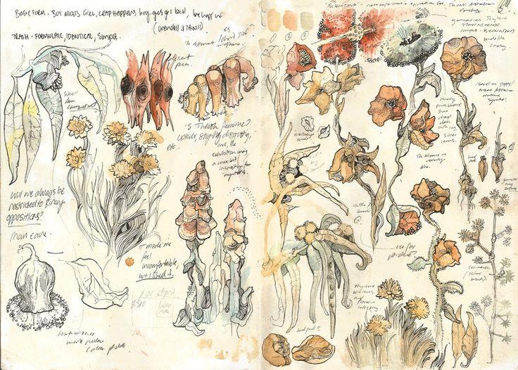 Flower studies by PaperandDust on DeviantArt