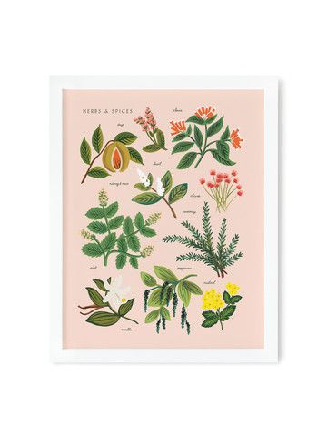 Herbs and spices print