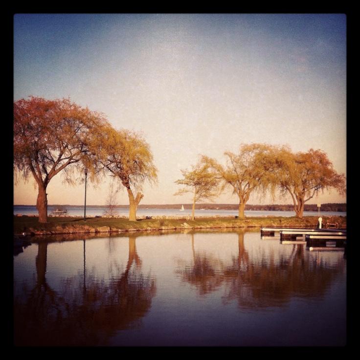 14 Best Leaf Watch Images On Pinterest