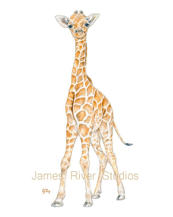Hey, I found this really awesome Etsy listing at https://www.etsy.com/listing/210748804/giraffe-art-giraffe-painting-giraffe