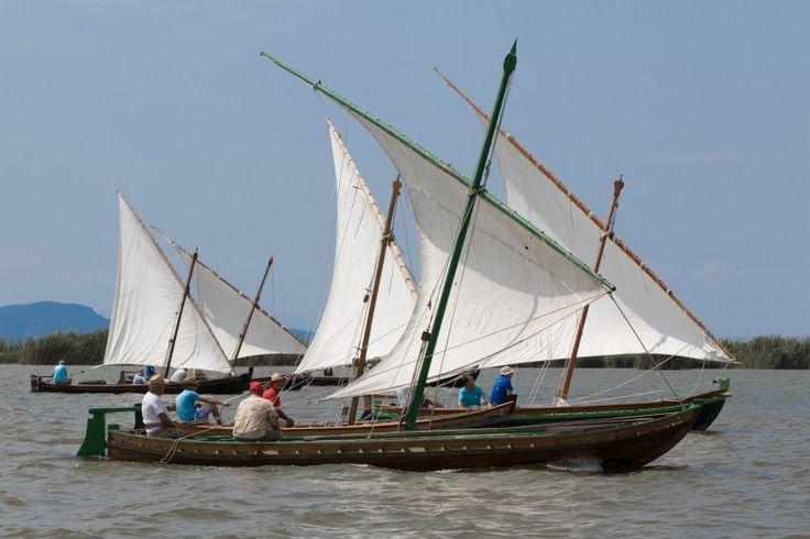 El Palmar vela latina. En esta ocasión, ha sido la Asociación de Vela de El Palmar la que ha organizado el evento y en el cual Baúl de Fotos ha podido salir a navegar.