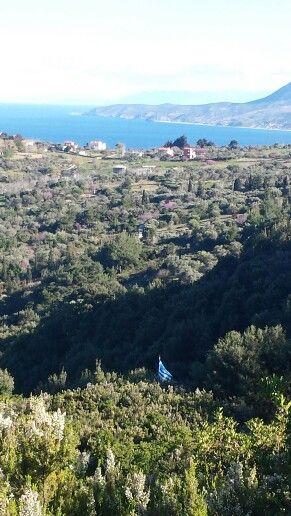 Kymi, Evia - Greece