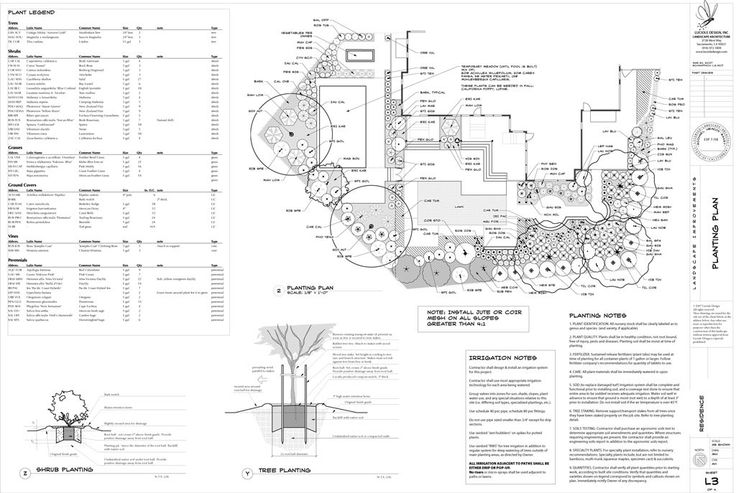 This planting plan features a lot of edible landscaping