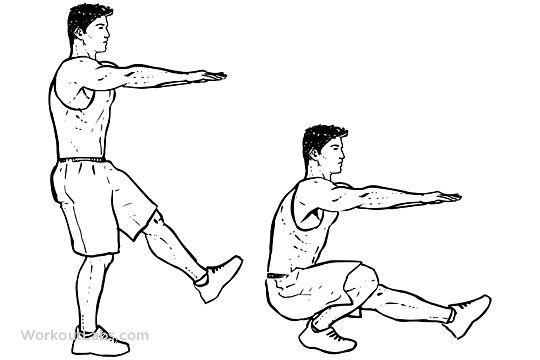 Pistol / Single-Leg Extended Arm Squats