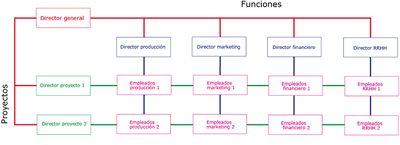 Gráfico de la Estructura Organizativa Matricial