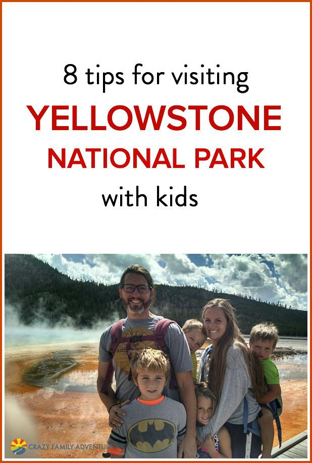 Is Yellowstone National Park on your bucket list as a family? Check out these 8 insider tips!