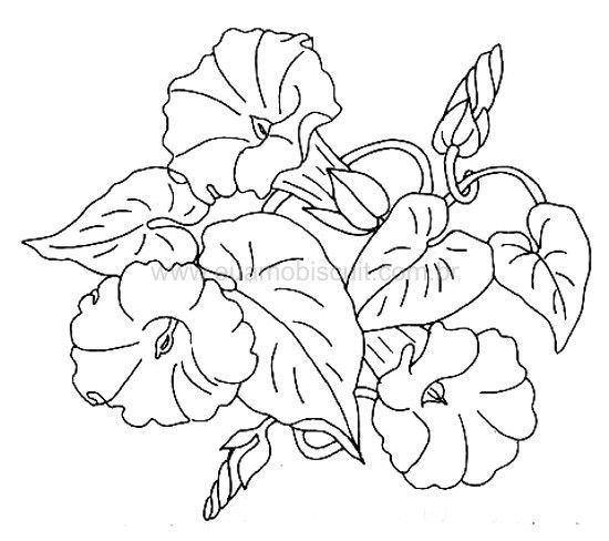 Morning Glory Vine Stencils : Artesanato virtual tecnicas de dicas para