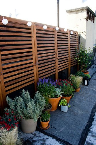 using IKEA panels for a fence! http://www.ikea.com/us/en/catalog/products/80204927/ $39.00