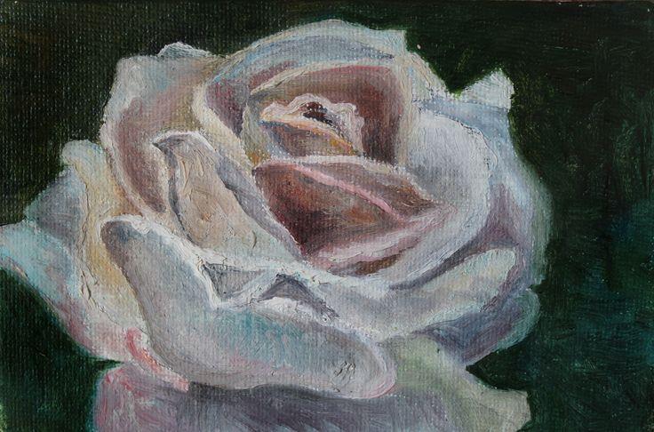 #art #oilpainting #oil #miniature #flower #color #beauti #nature #rose #whiteflower #miniature #масло #роза #цветок #белаяроза #природа #картинамаслом #миниатюра