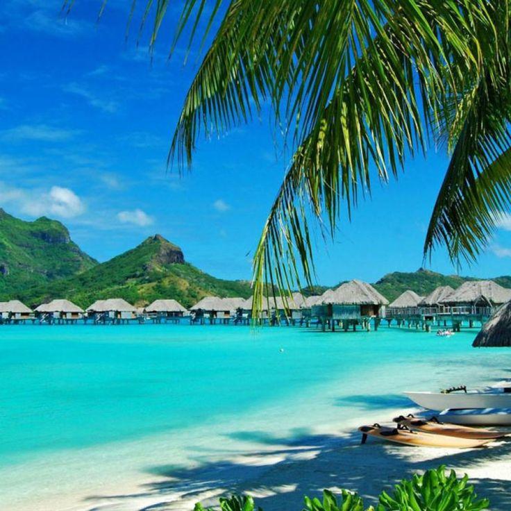 Aloha, člověče! Nebo nějaká slova, vystihující státní ideologii štěstí