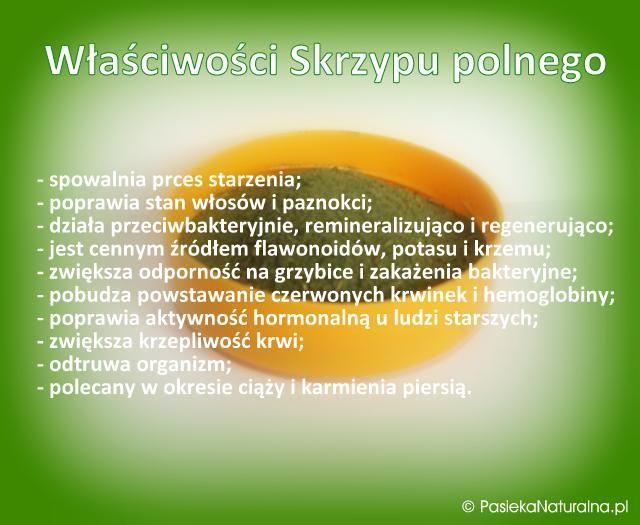 Źródło: skrzyp polny Related PostsJaka to roślina (?)Miód z herbatą lub kawąDlaczego pszczelarze używają dymu w pasiece?Edit Related Posts