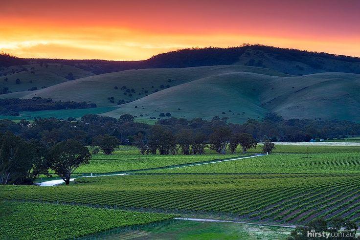 Sunrise over the Barossa Valley in South Australia