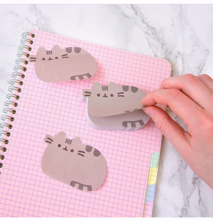 Pusheen sticky notes!