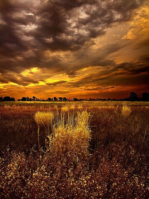 by PhilKoch: Philkoch, Warm Colors, Art Photography, Farms Boys, Sunri Sunsets, Phil Koch, Storms Cloud, Fields, Railroad Track
