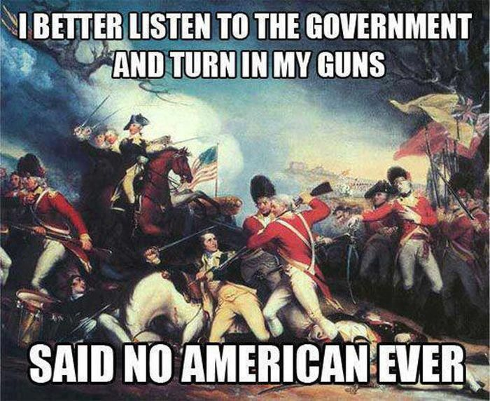 Image result for The American Revolution against British Gun Control
