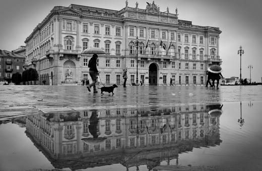 Concorso Trieste 2012 - Le foto della sezione Fotografare l'arte  Francesca Corrado - Arte allo specchio