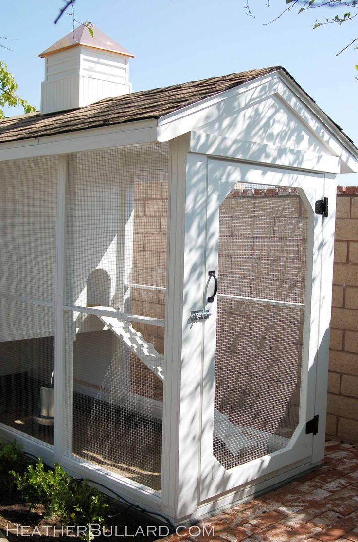 coolest chicken coop/aviary for fancy chickens!