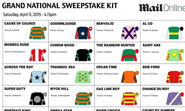 Grand National sweepstake: Your essential kit for the 2015 race!