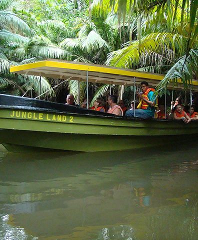 Jungle Land | Panama Canal Tour & Monkey Island