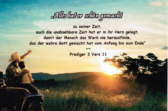 Prediger 3:11...Alles hat er schön gemacht zu seiner Zeit.... Ecclesiastes 3:11...He has made everything beautiful in its time....