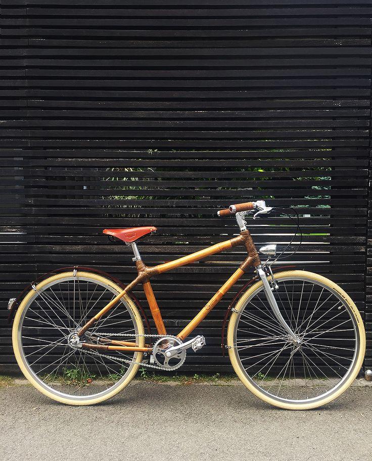 Man Bamboo Bike