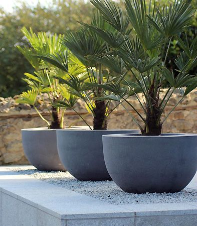 Large Modern Concrete Planters ~ Large Planters Very Prominent Among Modern  Front Yard Designs Are The Large Planters. The Larger, The Better.
