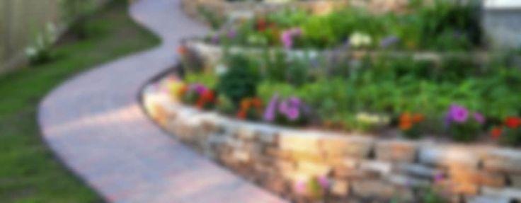 giardini a terrazza in Costa Azzurra: Giardino in stile in stile Mediterraneo di italiagiardini