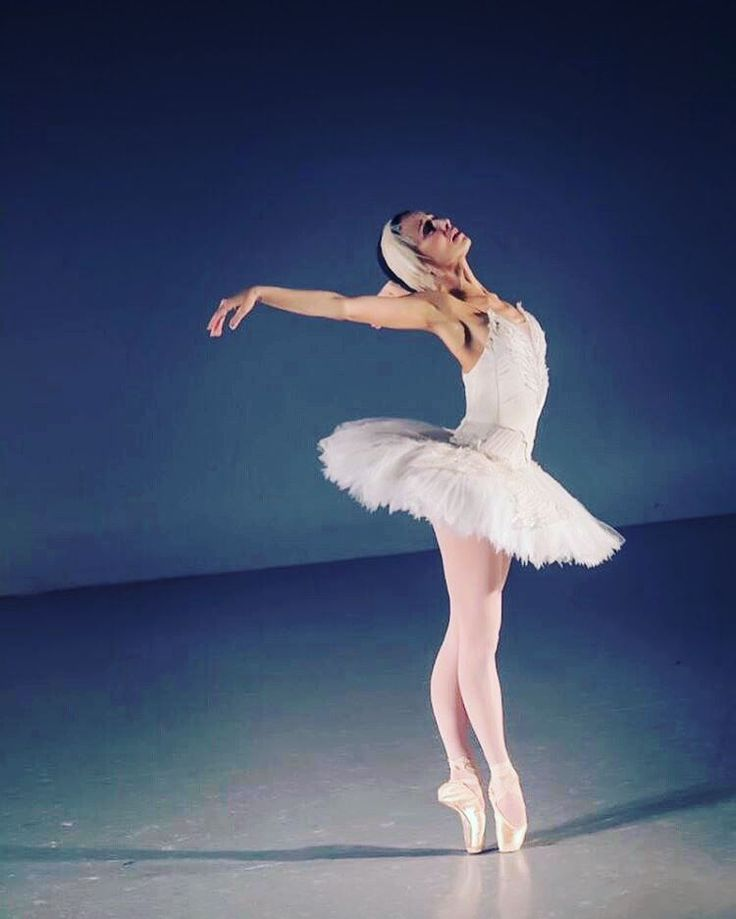 Sonia Rodriguez @sonitta - principal dancer with The National Ballet of Canada and Zarely Role Model is performing Dying Swan part in 'A Ballerina's Legacy'. Sonia us wearing Zarely Professional Ballet tights which have already become the new classic.  Photo by @gretchennoellephoto. Tights by @zarelywear.  #IamZarely #zarelywear  #zarely