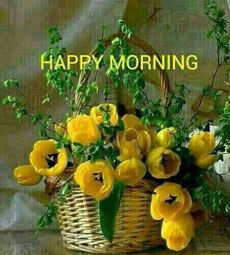 Good Morning, Sweet Day, happy, fresh. flowers, colors, beautiful images. whatsapp images, Whatsapp, whatsappgupshup, whatsapp gupshup, wonderful day, Sunday, Monday, Tuesday, Wednesday, Thursday, Friday, Saturday,