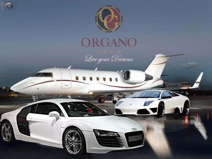 Best Organo Gold Benz Club Images On Pinterest Cars Coffee And Music Videos