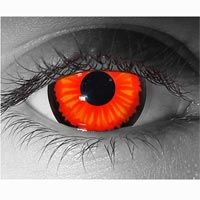One day if I am feeling extravagant on Halloween, I will get some crazy contact lenses.