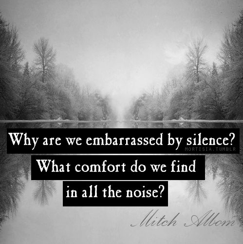 """Why are we embarrassed by silence? What comfort do we find in all the noise?"" ~ Mitch Albom"