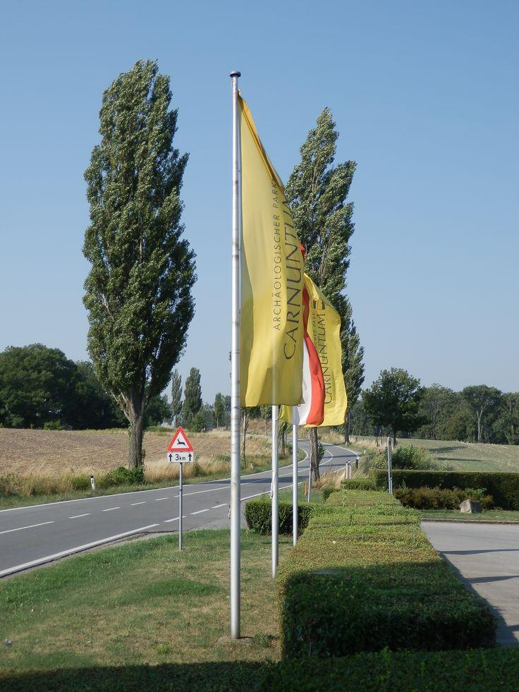 """Ve starověku byla pevnost Carnuntum součástí římské provincie Pannonie. Oblast byla osídlena v druhé polovině 11. století a již ve 12. století obdržela obec práva trhů. Dějiny místa jsou stejně proměnlivé jako dějiny celého Rakouska. Ve 13. století již existovala """"Petronellská linie"""" rodu Liechtensteinského."""