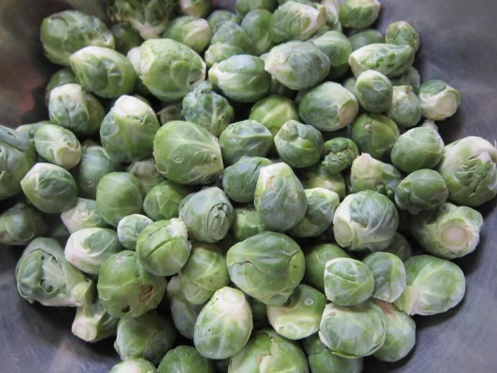 Freezing brussels sprouts brussel sprouts sprouts