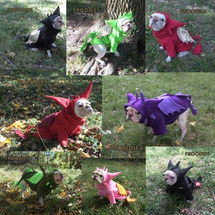 french bulldog boston pug dog froodies hoodies halloween costume cosplay dragon - Halloween Costumes In Boston