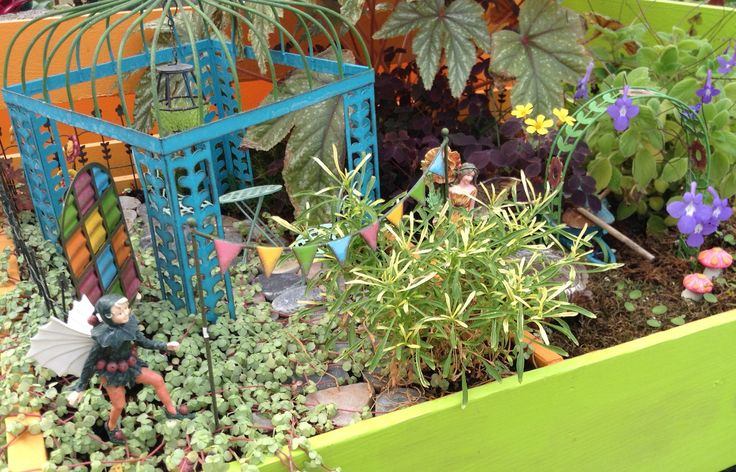 Miniature Fairy Garden Prairie Gardens Champaign