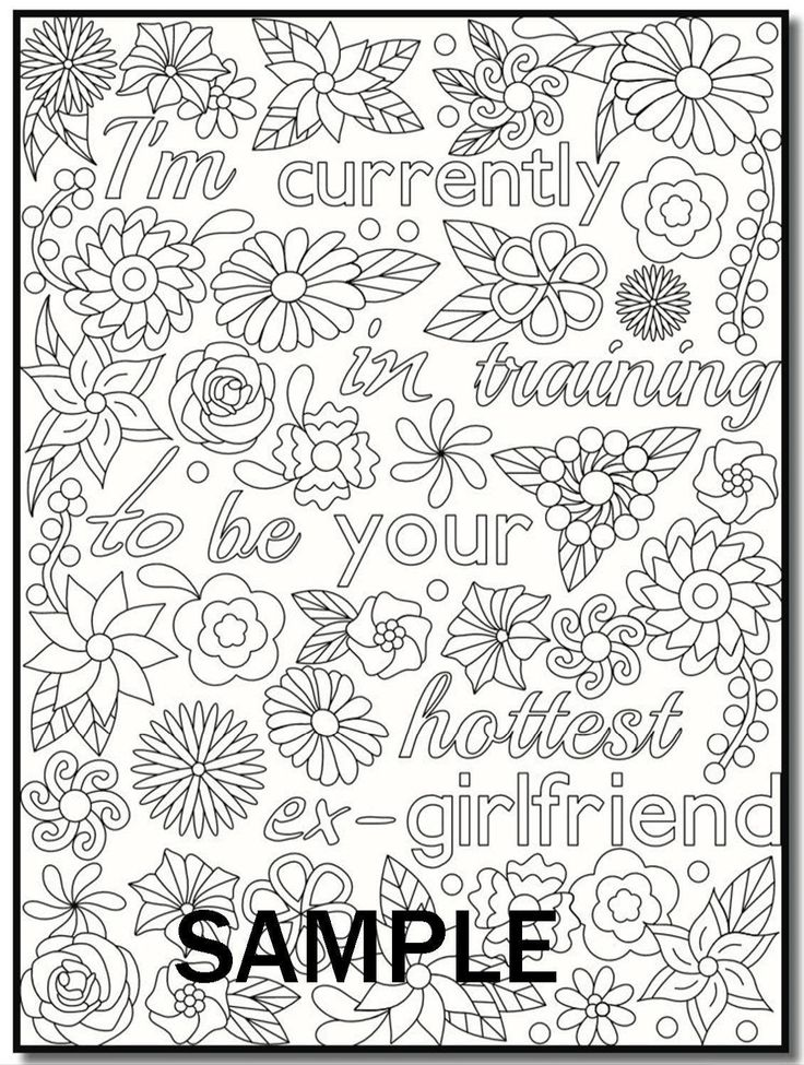 I Hate My Ex Boyfriend An Adult Coloring Book With Funny Romance Quotes