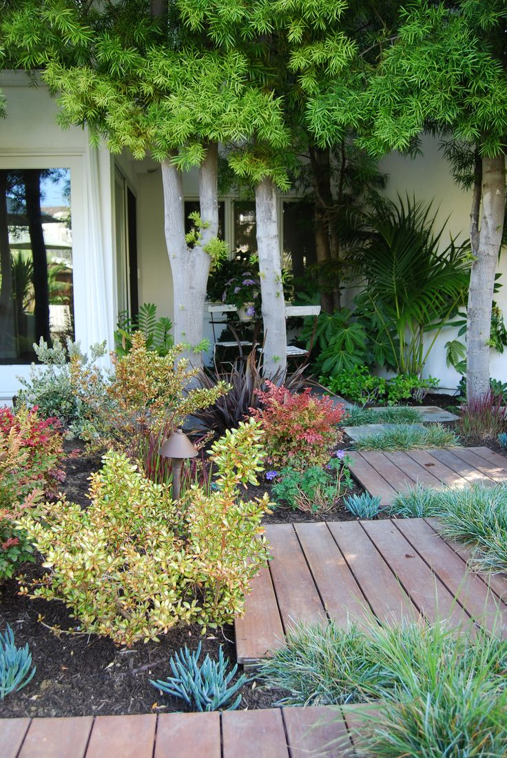 118 best images about CA Friendly® Gardening Landscapes by Roger's ...