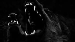 Image result for werewolf aesthetic