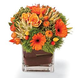 Birthday flowers and gifts: 'Clearly Orange'