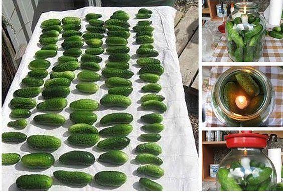 Így tartósítsd az uborkát, hogy hónapokig roppanós legyen! Remek módszer!