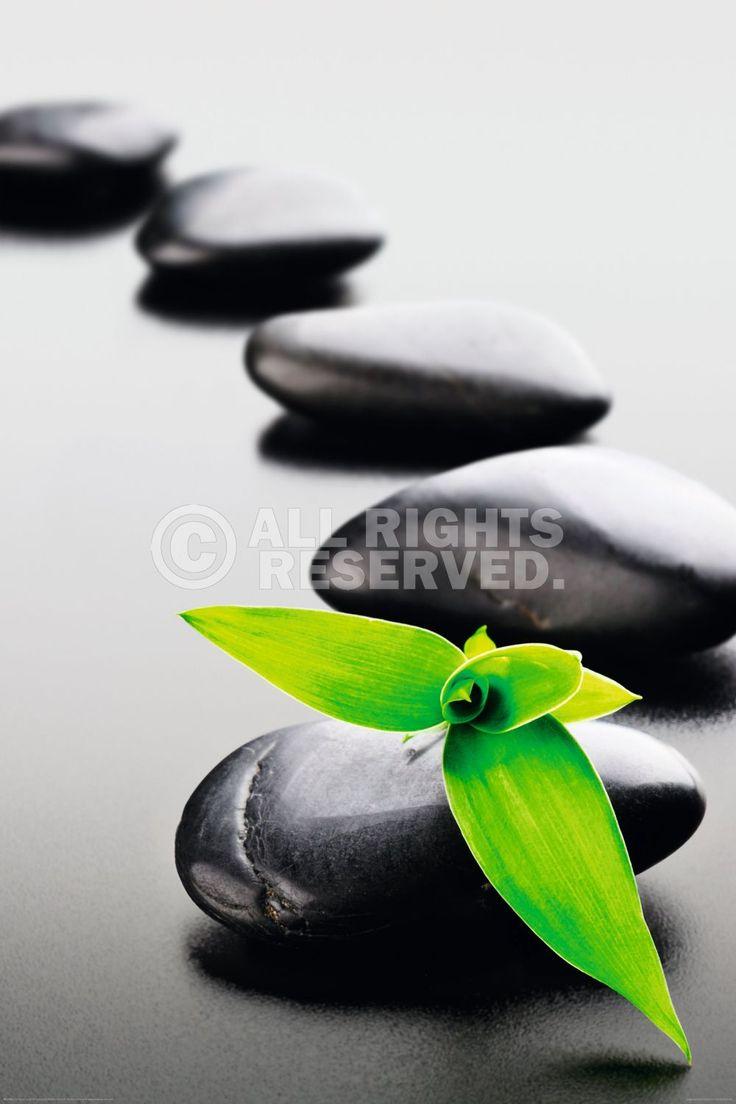XENOS Poster: Zen Stones   Green Online Te Koop. Bestel Je Poster, Je