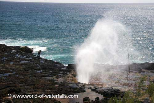Kipu Falls could very well be the nearest waterfall we encountered in Kaua'i to the Spouting Horn Blowhole near Po'ipu