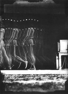 Motion Studies: Étienne-Jules Marey |